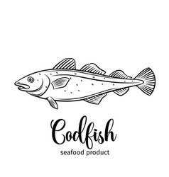 Codfish vector