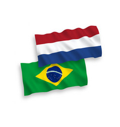 Flags brazil and netherlands on a white vector