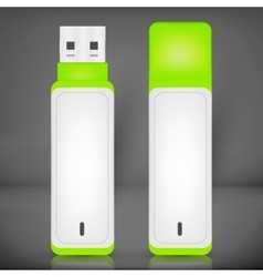 USB Flash Drive isolated vector image