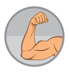 Muscular Biceps EPS10 vector image