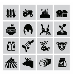 agriculture and farming vector image vector image