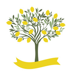 lemon tree with blank label on white background vector image