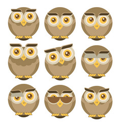 Set of owls isolated on white background flat vector