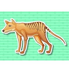 Tasmanian tiger vector