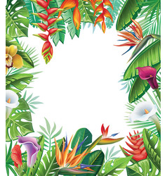 Tropical plants and flowers vector