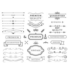 variety cute decoration elements vector image
