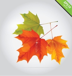 abstract nature leafs autumn symbol october vector image vector image