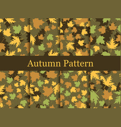 autumn leaves set of seamless patterns oak leaves vector image