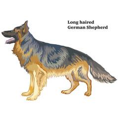 colored decorative standing portrait of german vector image