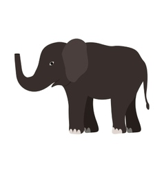 Elephant wild animal vector