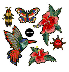 embroidery hummingbird hibiscus butterfly vector image