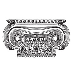 graeco-ionic capital design of a scroll rolled vector image