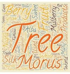 History of mulberry trees morus alba morus rubrum vector