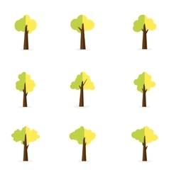 Set of tree for decoration vector