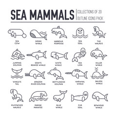 Set sea mammals thin line icons pictograms vector