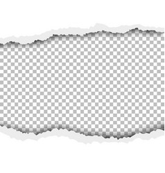torn hole in white sheet paper vector image
