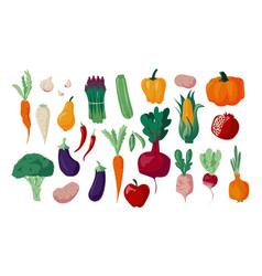 Autumn vegetables doodle organic food nature vector