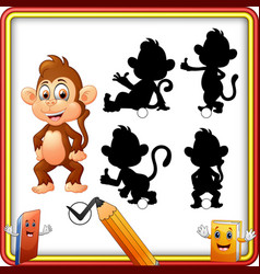 find the correct shadow cartoon funny baby monkey vector image