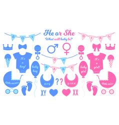 Gender reveal party set props for baby shower vector