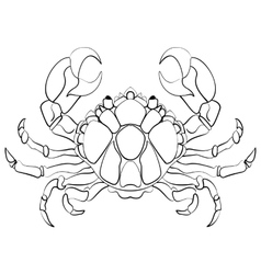 Hand drawn astrological zodiac sign Cancer vector