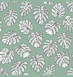 Monstera leaves pattern vector