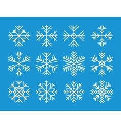 Set of the snowflakes icons vector image