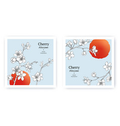 set spring backgrounds with sakura branch vector image