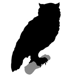 Silhouette of owl vector
