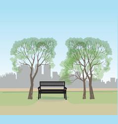 bench in city park spring landscape city tree vector image
