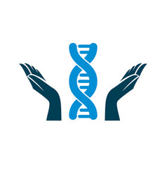 Caring hands hold a model of human dna vector