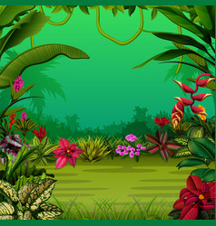 exotic forest with the trees and the flowers vector image