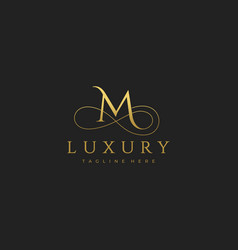m luxury letter logo design vector image