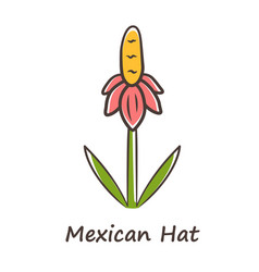 Mexican hat wild flower color icon upright vector