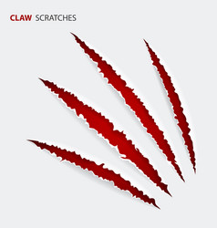 scratch claws of animal vector image