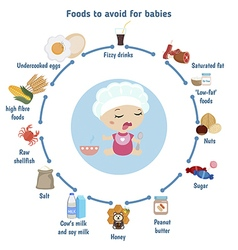 Foods to avoid for babies vector image vector image
