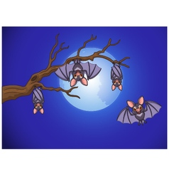 Adorable bat cartoon sleeping and fly at night vector