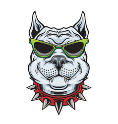 American pitbull terrier dog wearing sunglasses vector