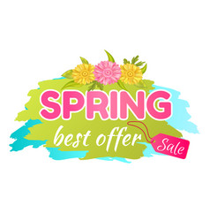 Best offer spring sale advertisement daisy flowers vector