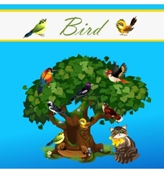 Card with colorful birds on the tree and cat vector image