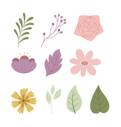 Flowers leaves foliage greenery vegetation icons vector