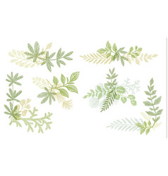 Green floral hand drawn decoration elements vector