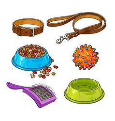 pet cat dog accessories - bowl collar leash vector image