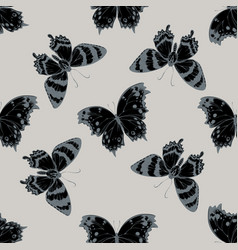 seamless pattern with hand drawn stylized alcides vector image
