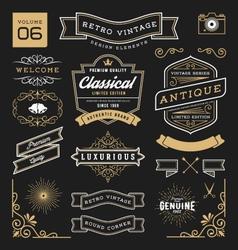 Set retro vintage graphic design elements vector