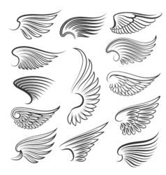 Wings isolated on white background cartoon tattoo vector