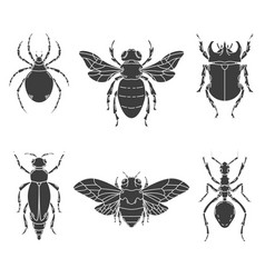 set of insects isolated on white vector image