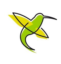 Graceful green hummingbird vector image