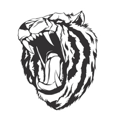 Angry tiger vector image