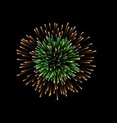 beautiful firework couple romantic salute vector image