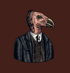 California condor gentleman american bird in vector